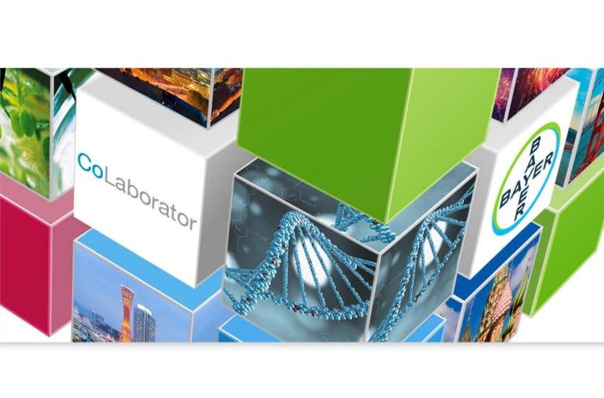 معرفی CoLaborator، شتابدهنده شرکت بایر