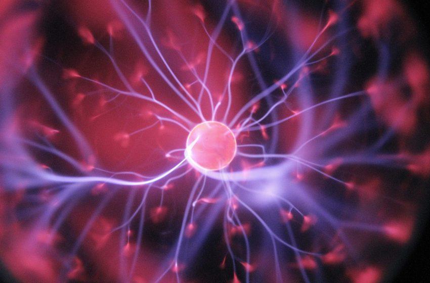 مطالعه میکروشناگر ها برای طراحی نانو ماشینها