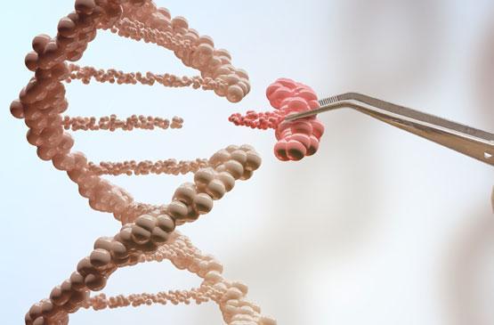 مقدمه بر دانشی که آینده را به چنگ میآورد، بیوتکنولوژی!
