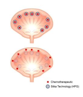 شیمی درمانی با استفاده از نانو تکنولوژی HPG