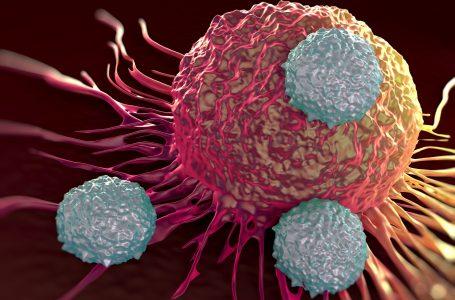 نقش تکنولوژی های دیجیتال در درمان سرطان