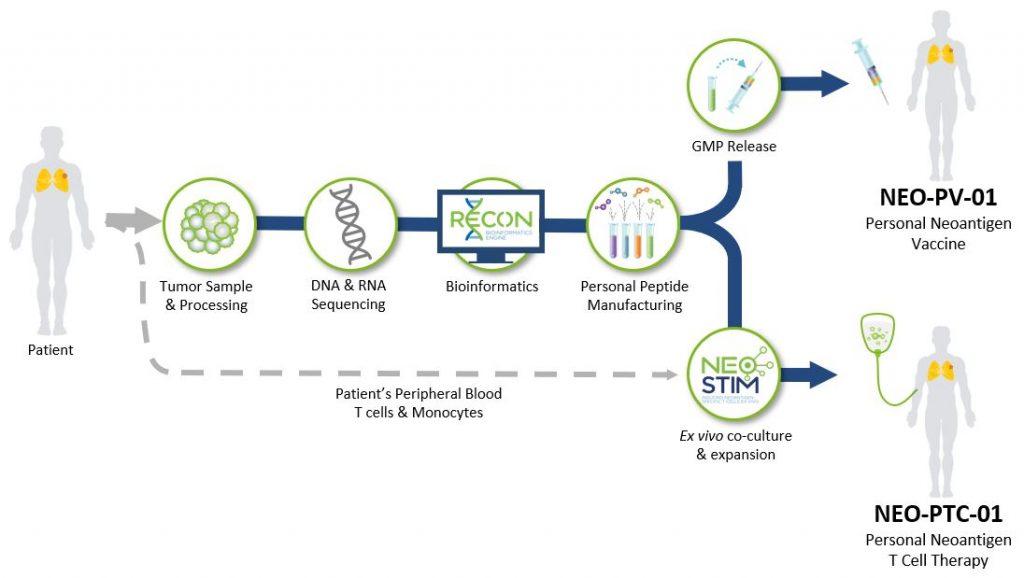 شرکت BioNTech تجاری سازی