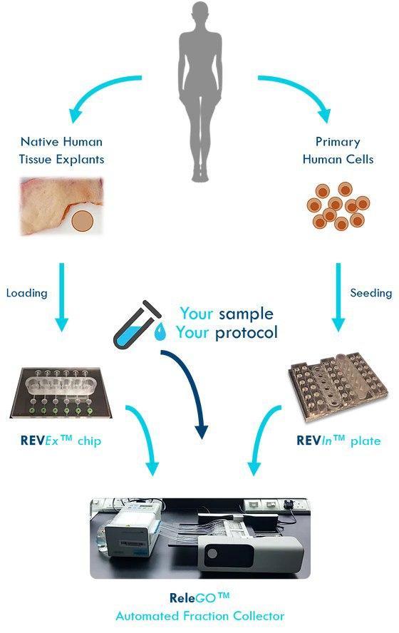 محصولات اندام تراشه - 2