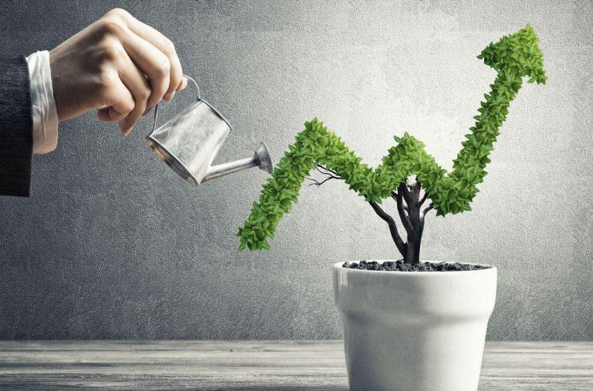 کسب و کار شما در کدام مرحله رشد خود قرار دارد؟