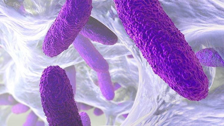 مقاومت میکروبی-مقاومت آنتی بیوتیکی