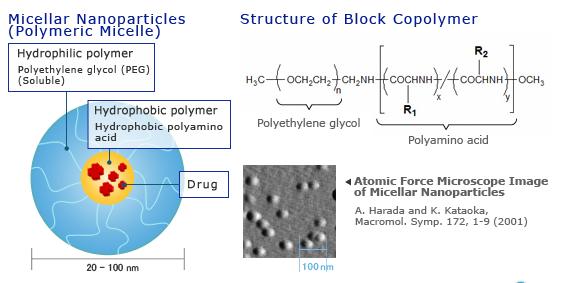 ساختار کلی نانو ذرات میسلار