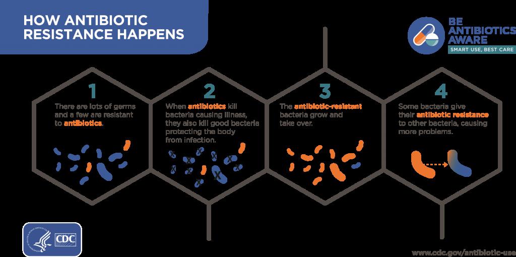 مکانیسم مقاومت میکروبی